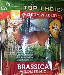 Premium Wildlife Seed: Brassica wildlife mix (5 lbs)
